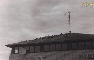 """Fotokonkursas """"Anykščiai ir apylinkės"""" (2016) - Kavinės stogas"""