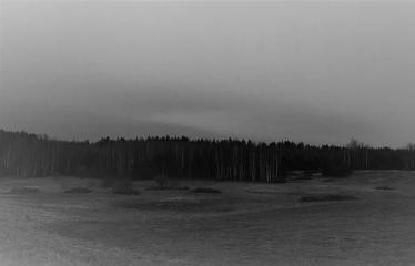 """Fotokonkursas """"Anykščiai ir apylinkės"""" (2017) - Miško peizažas"""