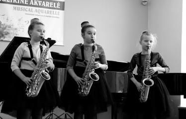 """Tarptautinis kamerinių ansamblių konkursas """"Muzikinė akvarelė"""" (2018) - Antroji diena - Renginio akimirka"""