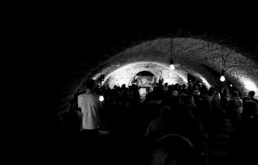 """Tarptautinė edukacinė stovykla - festivalis """"Troškimai"""" (2018) - Grupės """"Kamanių šilelis"""" gyvo garso koncertas - Koncertas"""