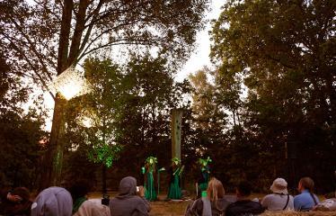 """Anykščių Miško festivalis (2018) - Panirimas į mišką - Grupė """"SEN SVAJA"""""""