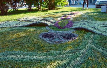 """Anykščių miesto šventė (2018) - """"Anykščių glėbyje"""" - Pilna programa - Floristinio kilimo fragmentas"""