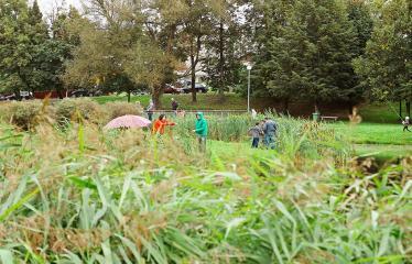 """Derliaus šventė """"Obuolinės"""" (2018) - Pilna programa - Anykščių miesto parkas"""