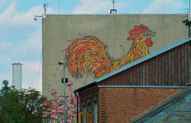 """Fotokonkursas """"Anykščiai ir apylinkės"""" (2018) - Gatvės menas"""
