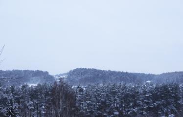 """Fotokonkursas """"Anykščiai ir apylinkės"""" (2019) - Žiema Anykščiuose"""