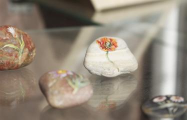 Reginos Sasnauskaitės tapybos darbų paroda - Tapyti akmenukai