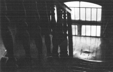 Analoginė fotografija - nuo A iki Z. Kūrybinės dirbtuvės su dr. Gintautu Trimaku - Laiptinė