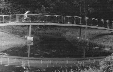 Analoginė fotografija - nuo A iki Z. Kūrybinės dirbtuvės su dr. Gintautu Trimaku - Anykščių miesto parkas