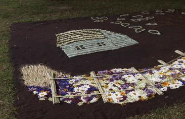 """Anykščių miesto šventė (2017) - """"ŠvenČIA ANYKŠČIAI"""" - Floristinių kilimų pynimas ir paroda - Floristinio kilimo fragmentas"""