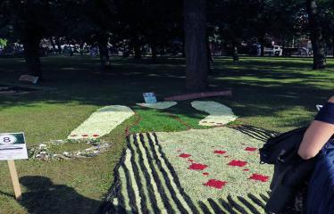 """Anykščių miesto šventė (2017) - """"ŠvenČIA ANYKŠČIAI"""" - Floristinių kilimų pynimas ir paroda - Anykščių rajono Traupio bendruomenės floristinis kilimas"""