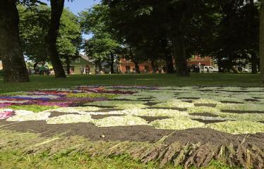 """Anykščių miesto šventė (2017) - """"ŠvenČIA ANYKŠČIAI"""" - Floristinių kilimų pynimas ir paroda - Ukmergės rajono Rečionių bendruomenės floristinis kilimas"""