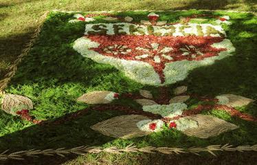 """Anykščių miesto šventė (2017) - """"ŠvenČIA ANYKŠČIAI"""" - Floristinių kilimų pynimas ir paroda - UAB """"Virema"""" floristinis kilimas"""