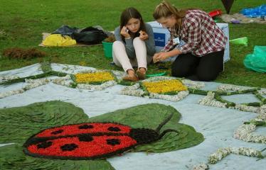 """Anykščių Miesto šventė (2016) - Pasaulio anykštėnų VIII suvažiavimas """"Po gimtinės laja"""" - Trečioji diena - Šventės akimirka - floristinių kilimų pynimas"""