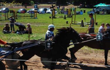 """36-oji Respublikinė tradicinės kultūros ir žirgų sporto šventė """"Bėk bėk, žirgeli!"""" (2015) - Varžybos"""