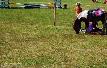 """36-oji Respublikinė tradicinės kultūros ir žirgų sporto šventė """"Bėk bėk, žirgeli!"""" (2015) - Šventės akimirka"""