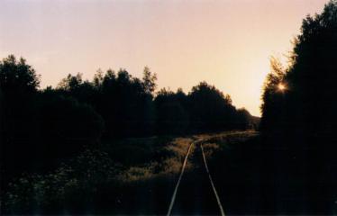 """Fotokonkursas """"Anykščiai ir apylinkės"""" (2014) - Siaurukas"""