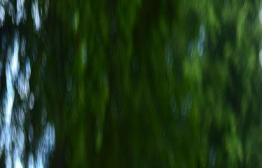 """Valstybės (Lietuvos karaliaus Mindaugo karūnavimo) diena (2017) - Valstybės vėliavos pakėlimo ceremonija / Koncertas """"Gyva padangė"""" - Šokėjo portretas"""