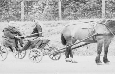 """Fotokonkursas """"Anykščiai ir apylinkės"""" (1975) - 1975 m. birželio 12 d. Prof. Vasinauskas keliaudamas arkliu po Lietuvą užsuko į Naujuosius Elmininkus"""